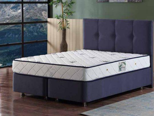 Легло Платин